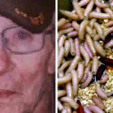 A Veteran Died At This VA Hospital But What They Found In His Wound Is Horrific