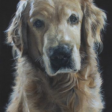 My uncle paints dog portraits. You might say that he is a little bit talented.