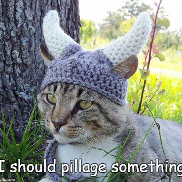Viking cat crochete hat
